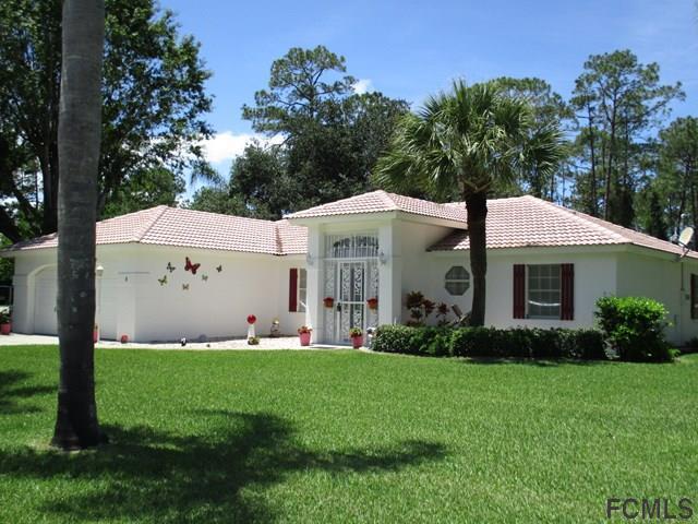 1 Wellwater Drive, Palm Coast, FL 32164