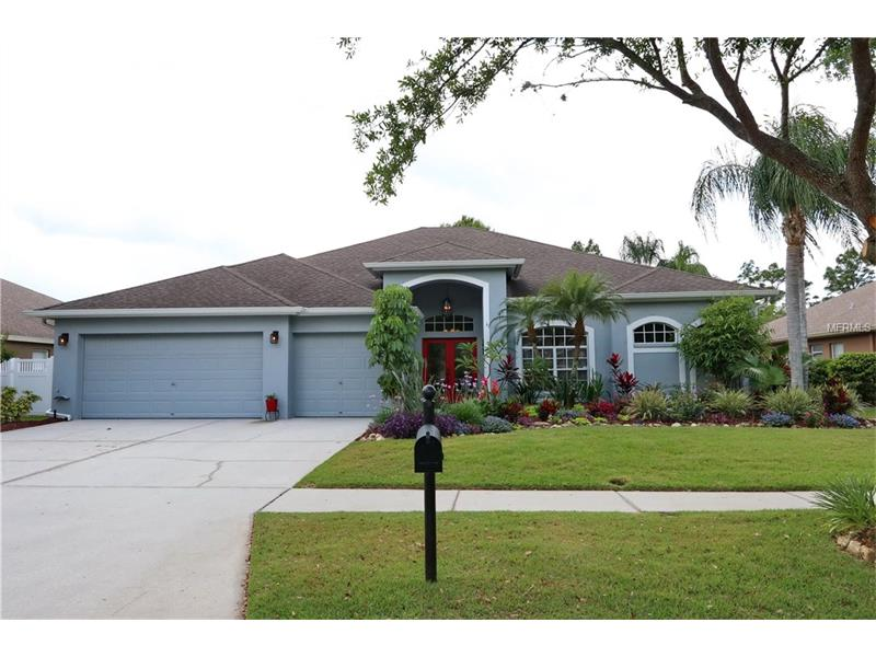 17713 CURRIE FORD DRIVE, LUTZ, FL 33558