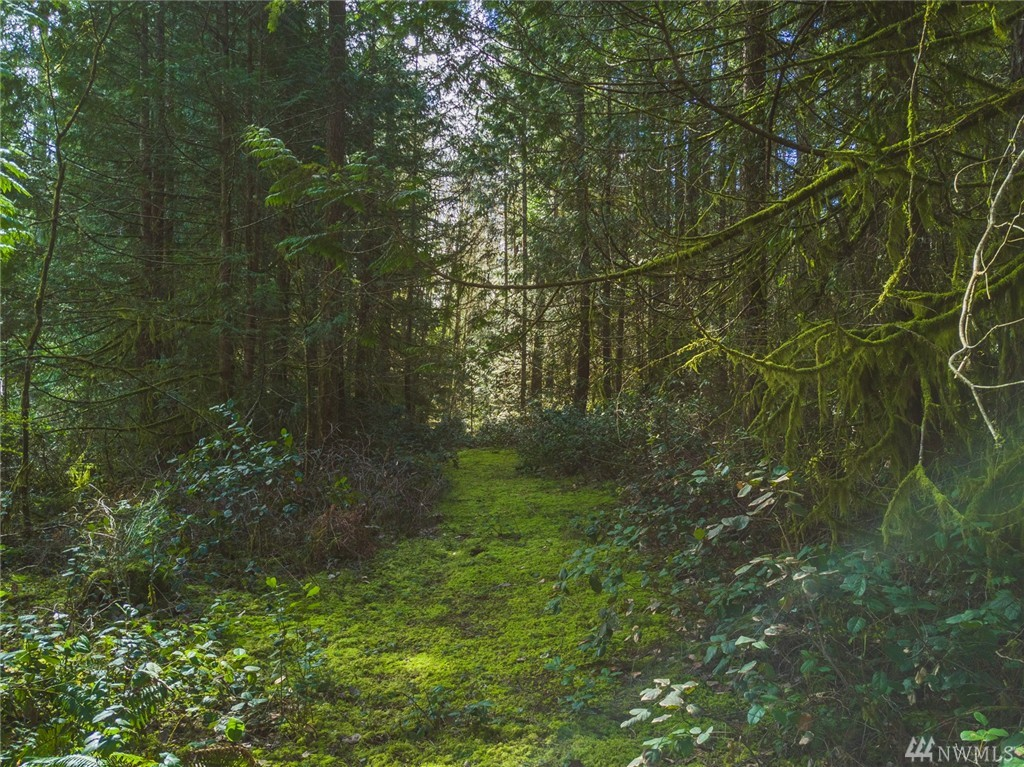 SW County Line Rd, Port Orchard, WA 98366