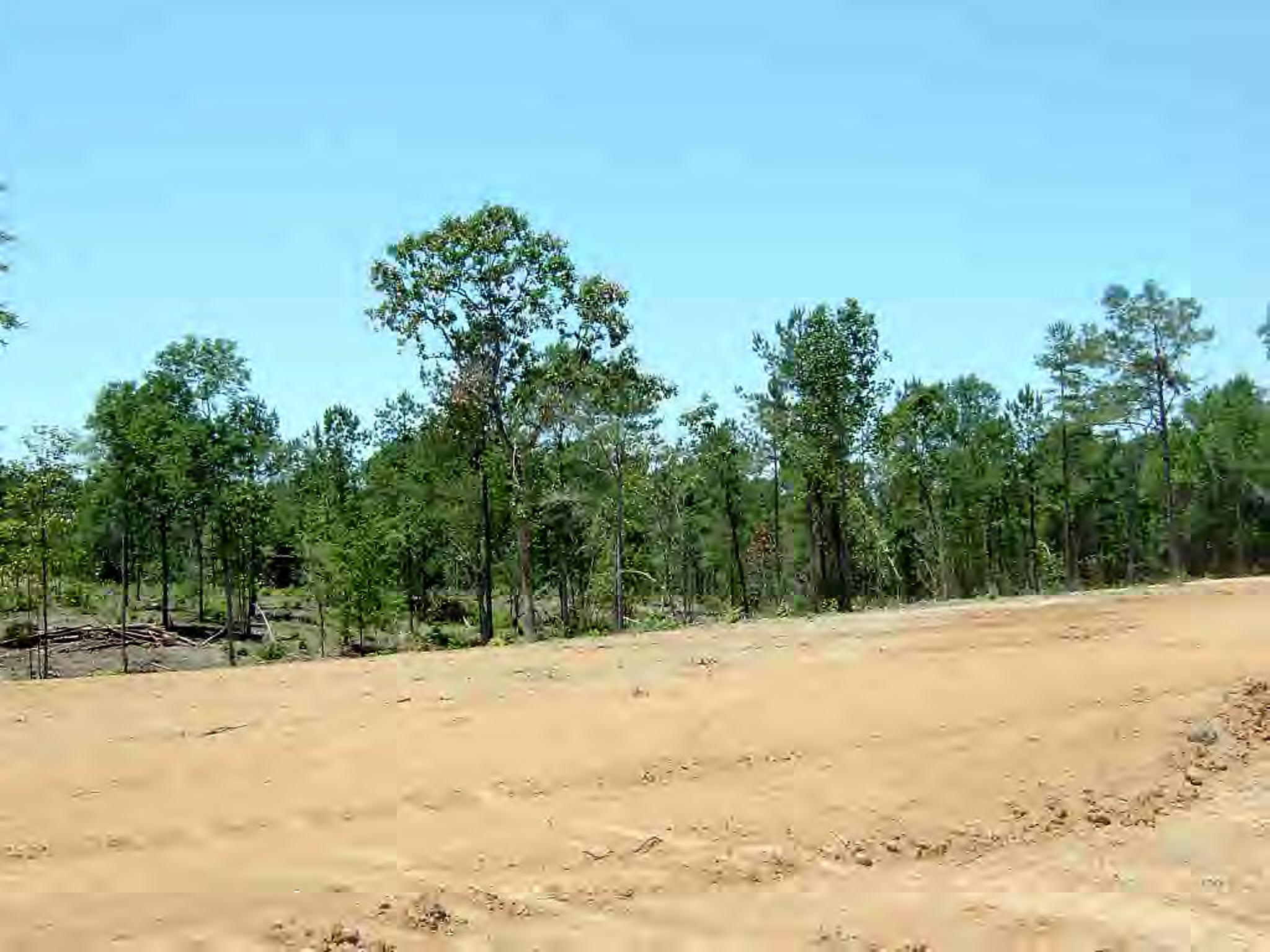 Lot #5 Wild Estates Road, McComb, MS 39648