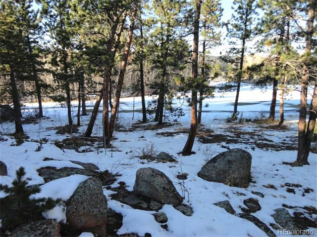 Lot 15 W Fox Acre Drive, Red Feather Lakes, CO 80545
