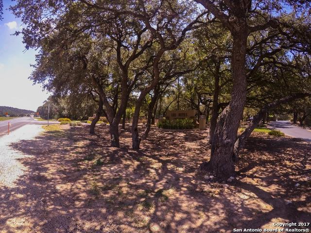 11006 Reyes Canyons, Helotes, TX 78023