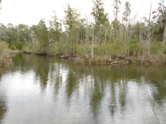 Soldier Creek Rd, Lillian, AL 36549