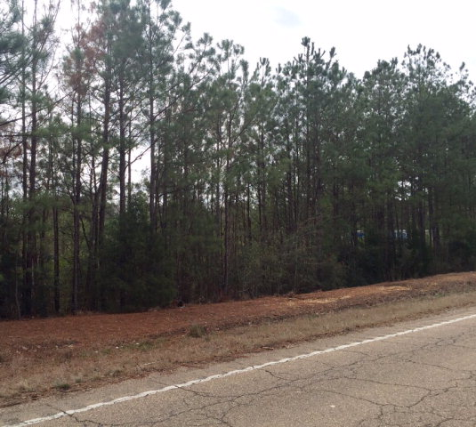X Hwy 24, Gloster, MS 39638