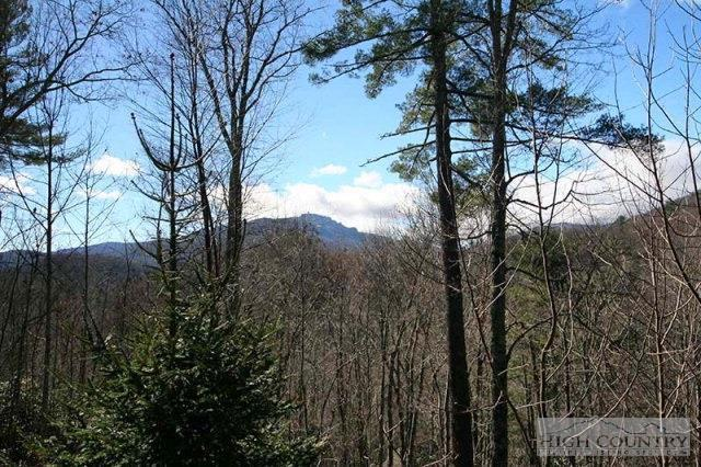 465 Peaceful Haven Drive 512, Boone, NC 28607