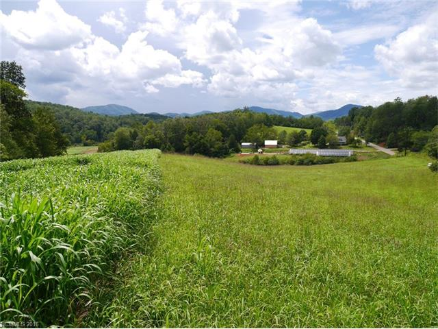 1921 Silvers Welch Road, Old Fort, NC 28762