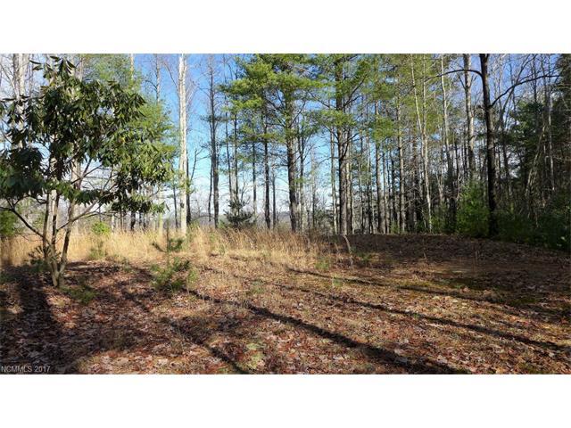 Lot 606/608 Lost Mine Trail 606/608, Brevard, NC 28712