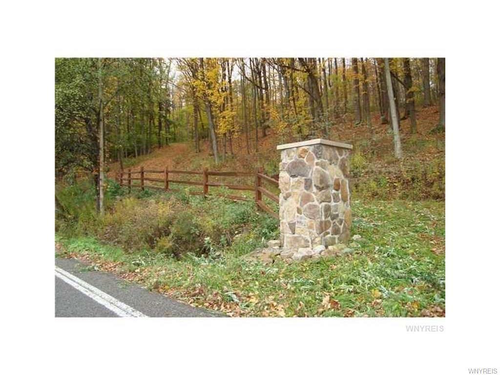 VL Irish Road, Colden, NY 14033