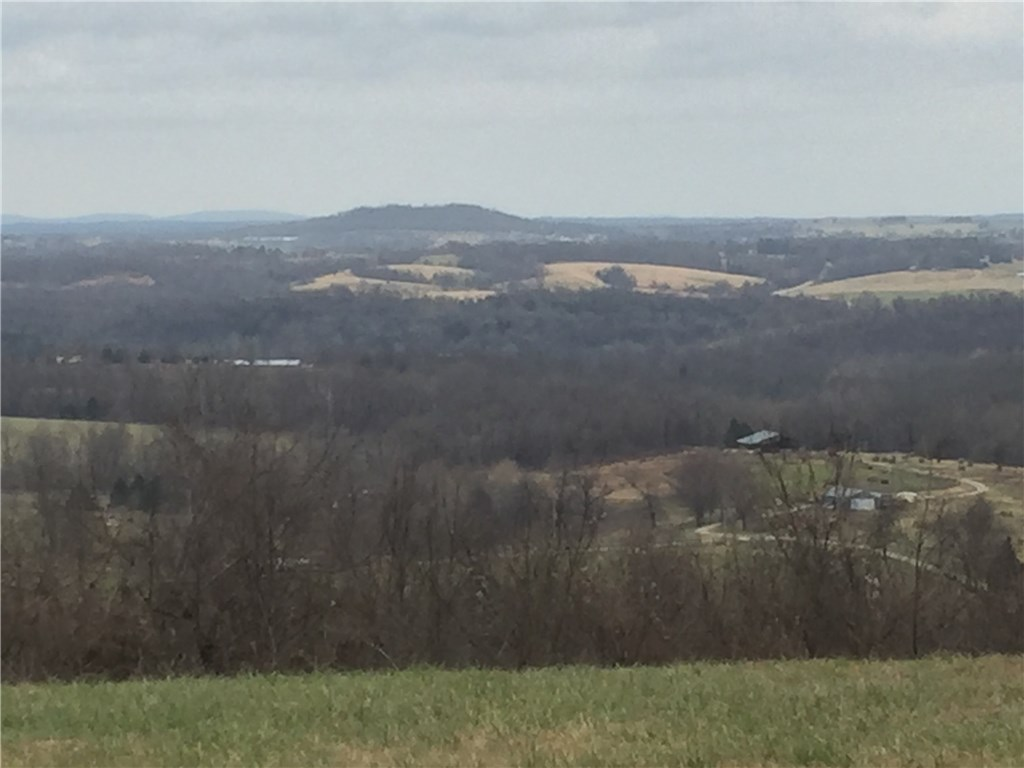21354 FIRE TOWER RD, Elkins, AR 72727