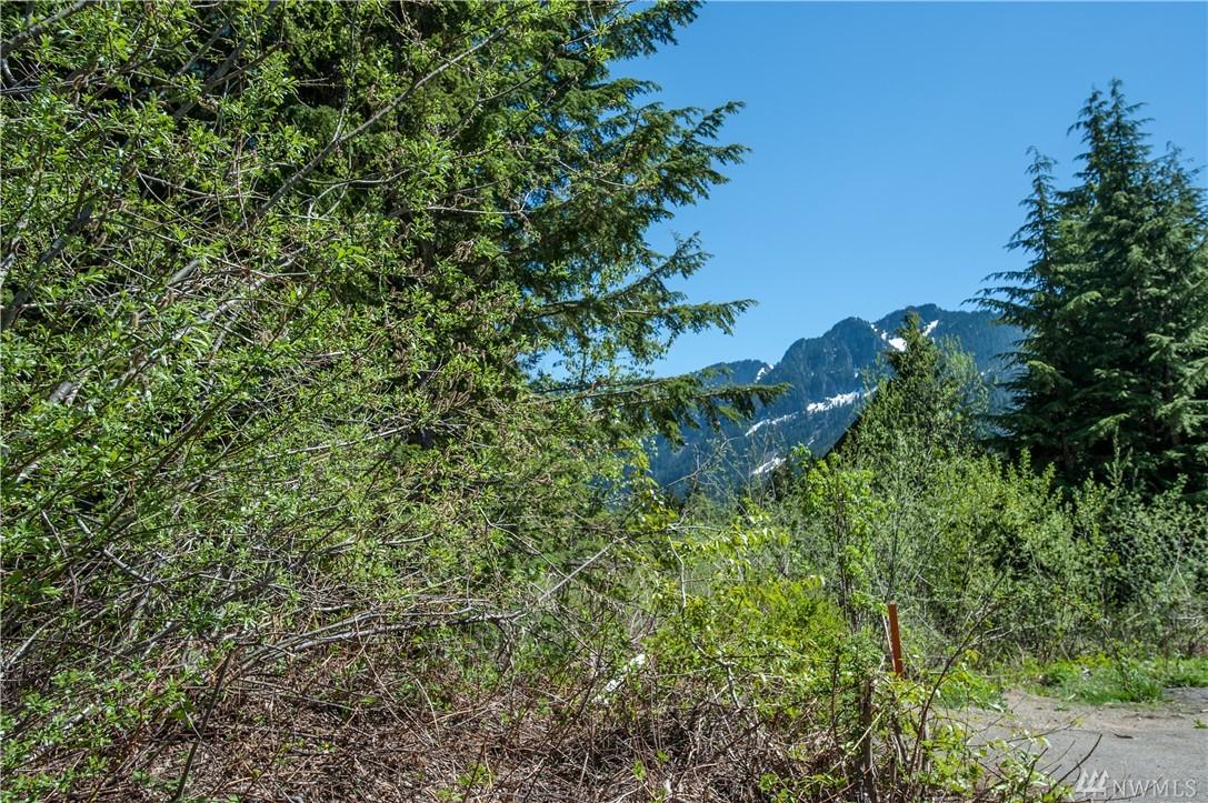 41 Romans Ct, Snoqualmie Pass, WA 98068