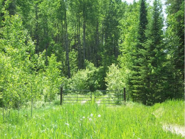 Parcel C Crane Lake Road, Crane Lake, MN 55725