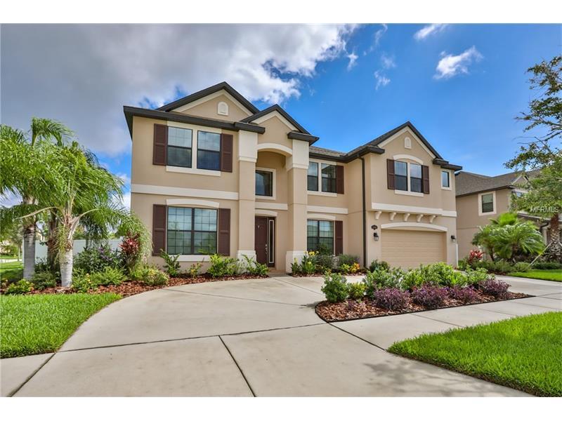 11802 GILMERTON DRIVE, RIVERVIEW, FL 33579