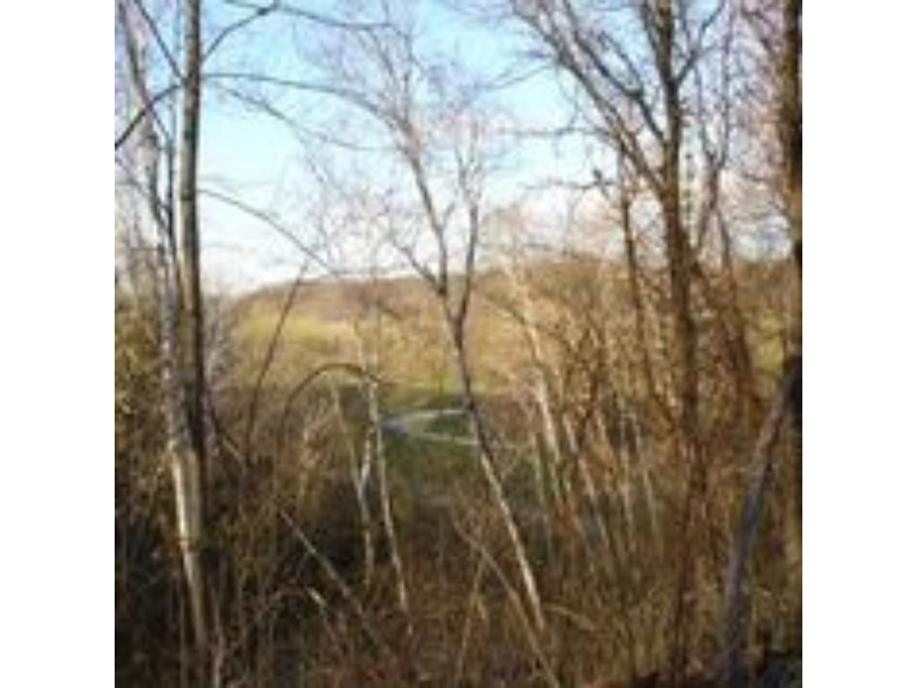 xxx County Road O, Diamond Bluff, WI 54014