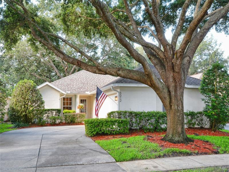 6012 SPRING CREEK COURT, MOUNT DORA, FL 32757