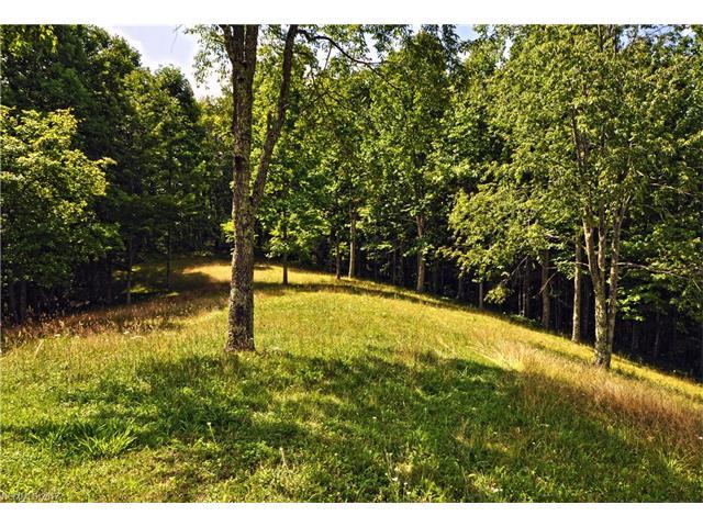 000 Howard Moore Road, Hot Springs, NC 28743