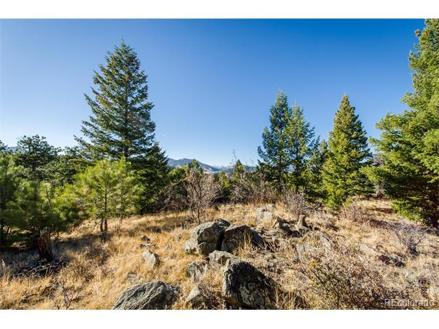 312 RUBY FOREST Trail, Evergreen, CO 80439