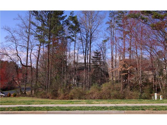 V1 Stone House Road V1, Brevard, NC 28712