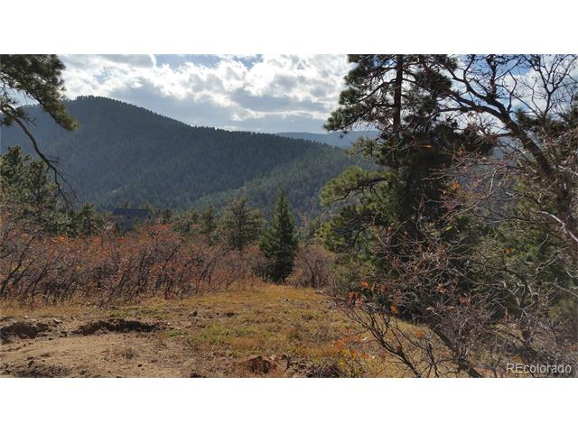 11714 Saddle Mountain Trail, Littleton, CO 80126
