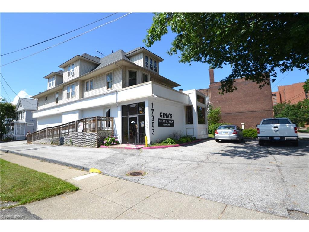 17303 Detroit Ave, Lakewood, OH 44107