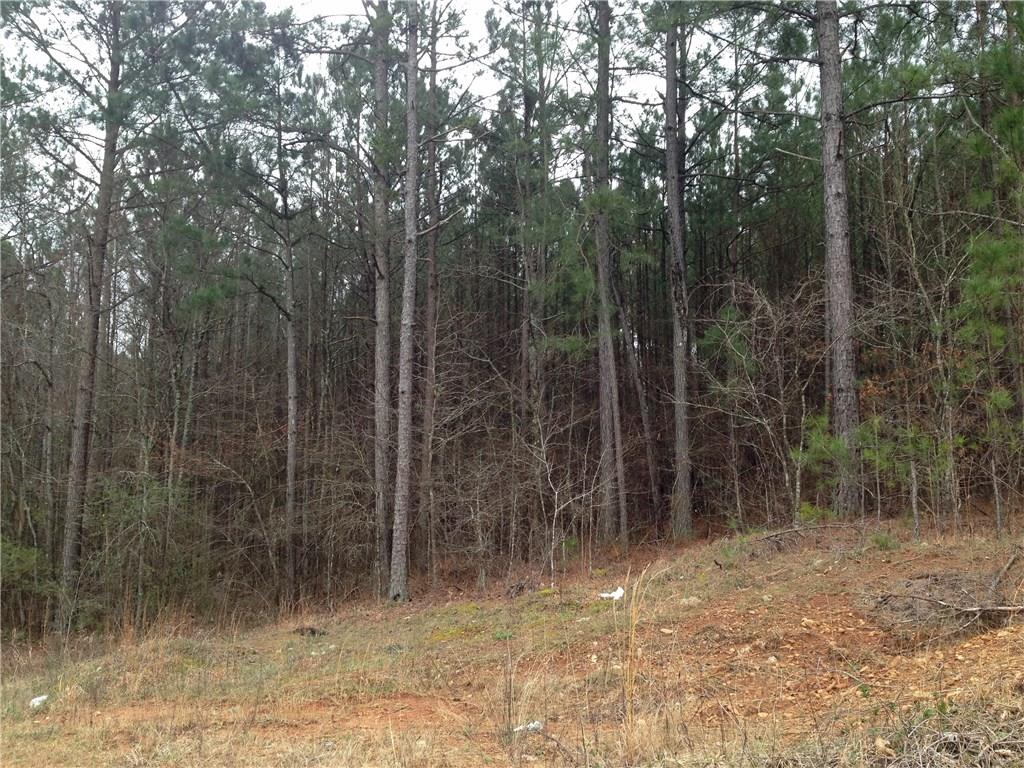 COOSA COUNTY ROAD 64, GOODWATER, AL 35072