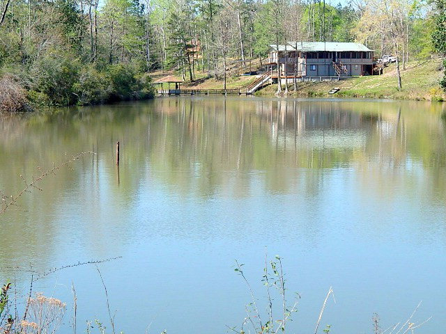 Hwy 43 North, Poplarville, MS 39470