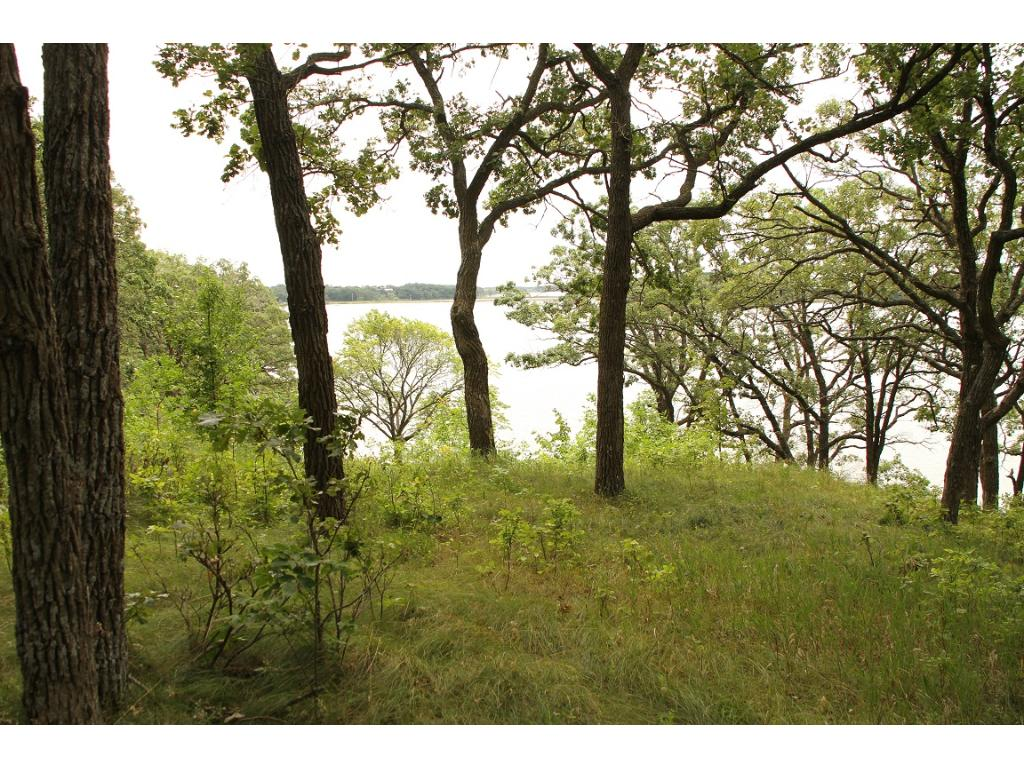 Lots 4 344th Ave, Battle Lake, MN 56515