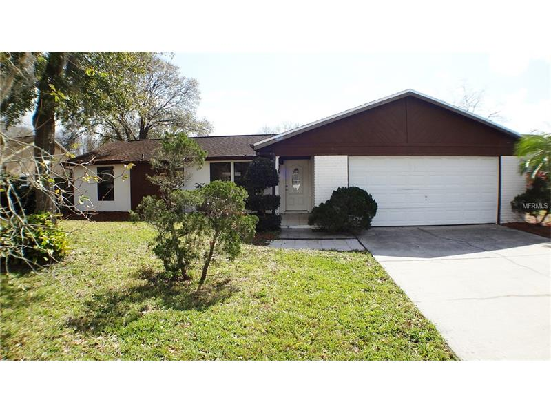 15117 WILLOWDALE ROAD, TAMPA, FL 33625