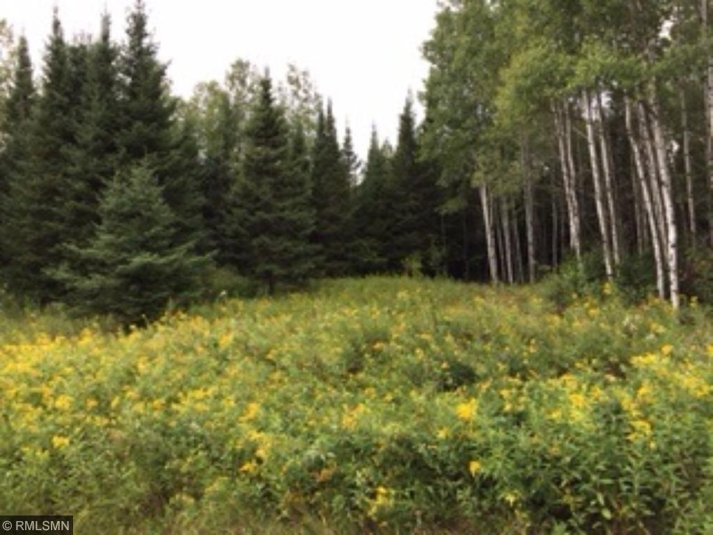 XXXX Forest Road 117, Babbitt, MN 55706