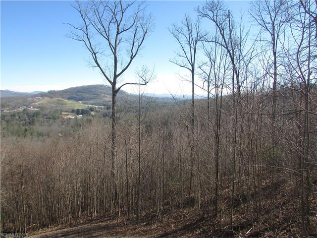 Build your mountain home with beautiful long-range views in Carriage Park.  Amenities include tennis courts, indoor pool, clubhouse, fishing in community pond while living minutes away from downtown Hendersonville and dining, shopping, golf, hiking, biking, etc. Tax value is $240,000