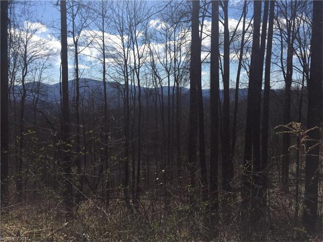 Lace Falls is a well maintained/ well planned community in the Edneyville area. LOT# 36 is a level to gently sloping lot, mountain views possible w/ some tree removal/ topping. Private country feel but only 15 minutes to 4 Seasons Blvd.