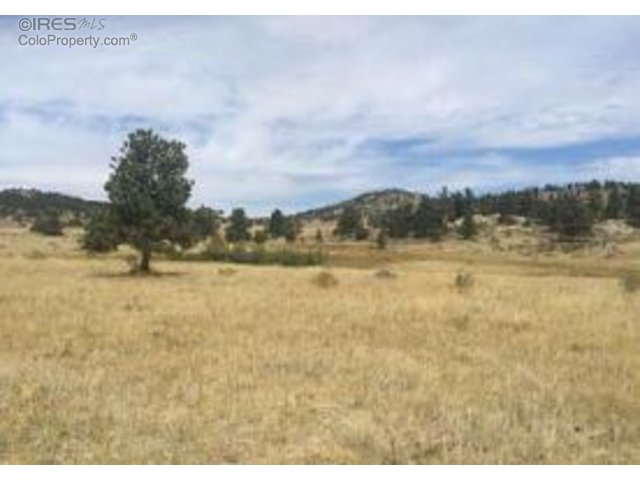 W TBD County Road 74E, Livermore, CO 80536