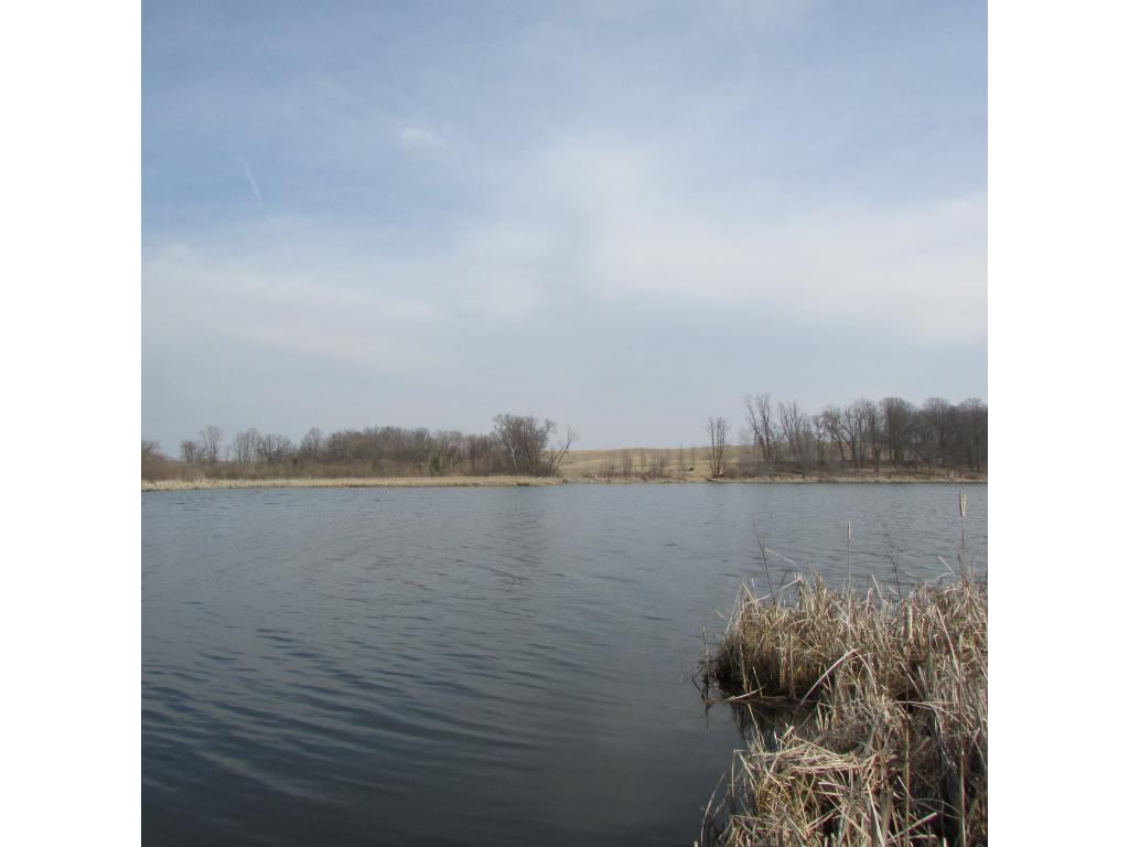 TBD E Pearl Lake Road, Lake Eunice Twp, MN 56501