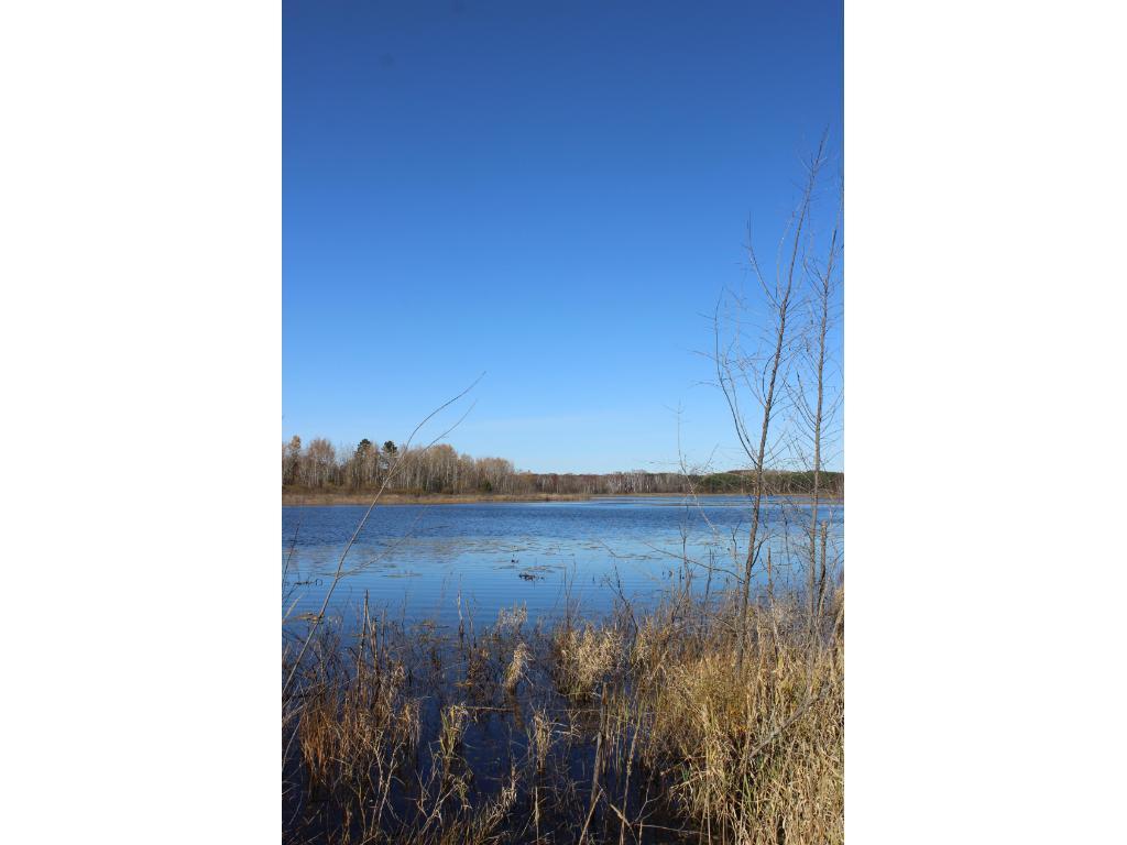 xxx Blue Heron Drive, Twin Lakes Twp, MN 55718