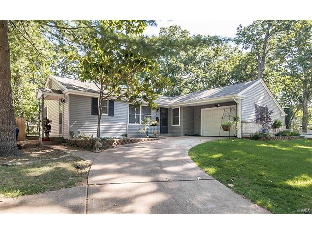 457 Forest Green, Webster Groves, MO 63119