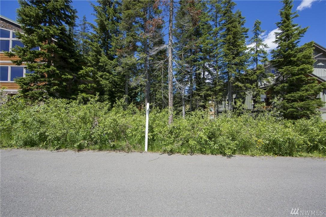 26 Guye Peak Lane, Snoqualmie Pass, WA 98068