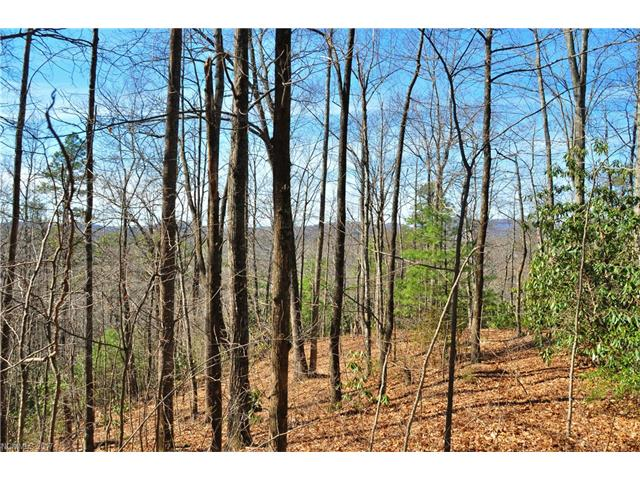 Two great lots for the price of one waiting for your dream home (or homes) with long range views and a convenient location between Hendersonville and Lake Lure.  Modular construction is allowed on these lots that have underground power and telephone to the property.
