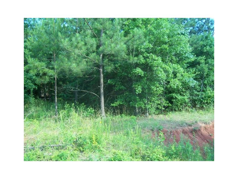 SMOKEY Trail, Crawford, GA 30630