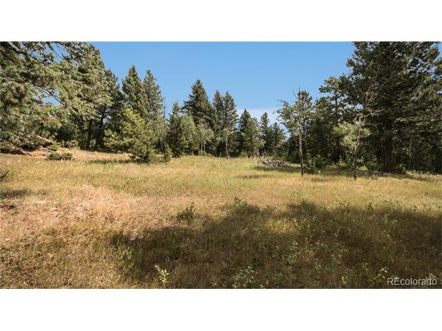 8800 S Blue Creek Road, Evergreen, CO 80439