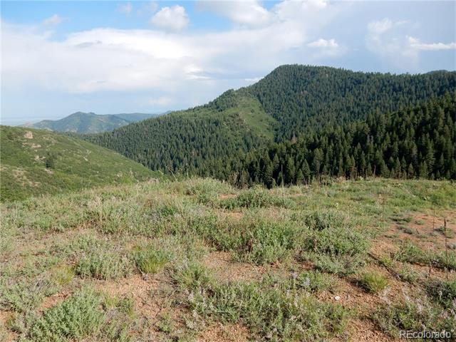 14184 Cotton Trail, Littleton, CO 80127