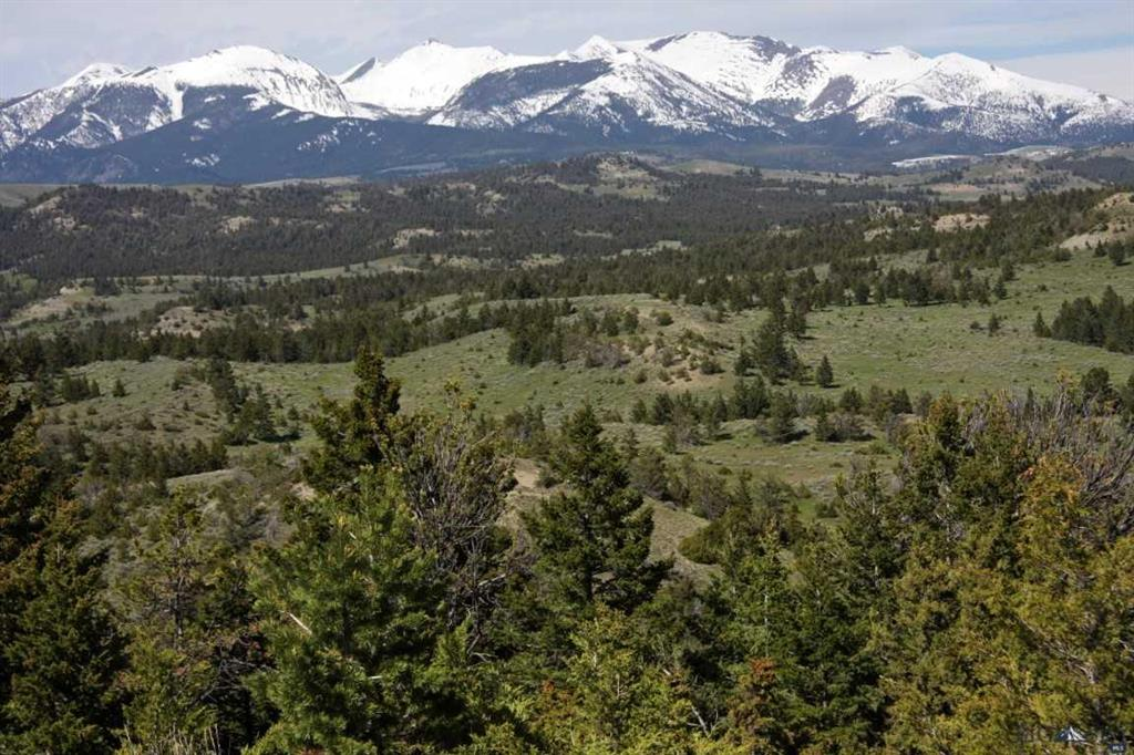 TBD Crazy  Mountain Alpine Ranch Road, Livingston, MT 59047
