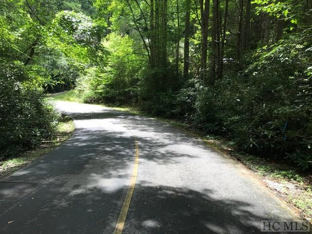 65 West Christy Trail, Sapphire, NC 28774