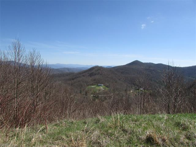 Lot 2 Turkey Trot Road, Clyde, NC 28721
