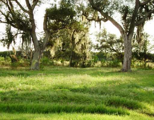1663 SE HONEYBELL LANE, ARCADIA, FL 34266