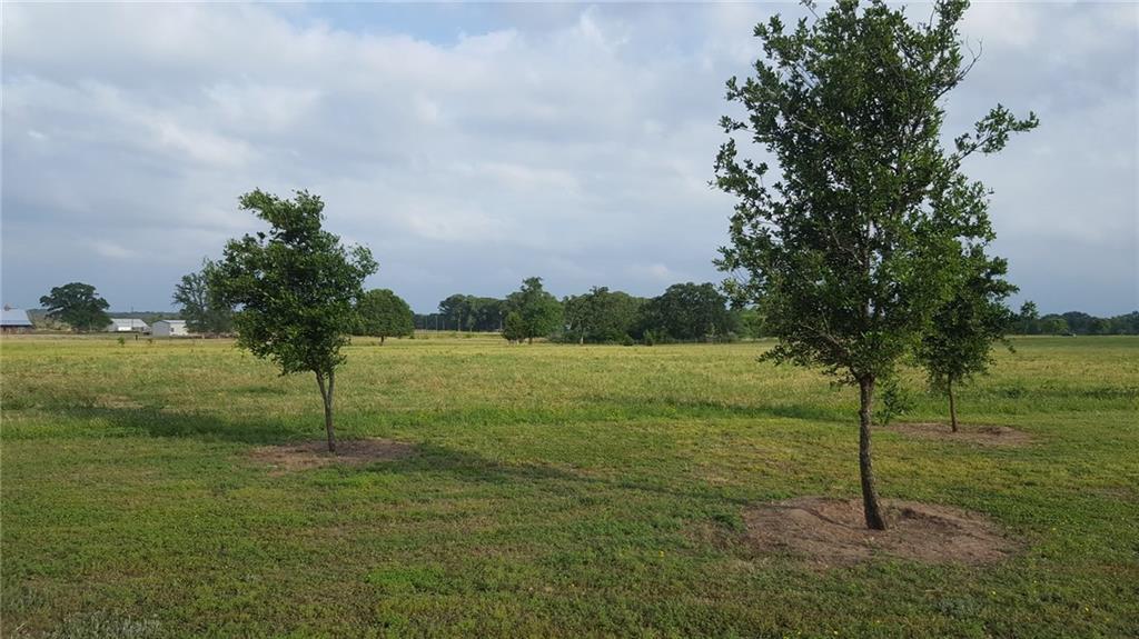 004 Vz County Rd 2501, Canton, TX 75103