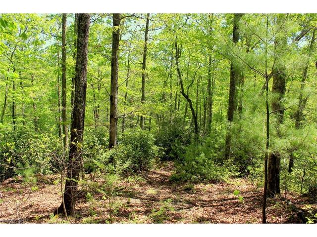 000 Firefly Trail Lot 78, Hot Springs, NC 28743