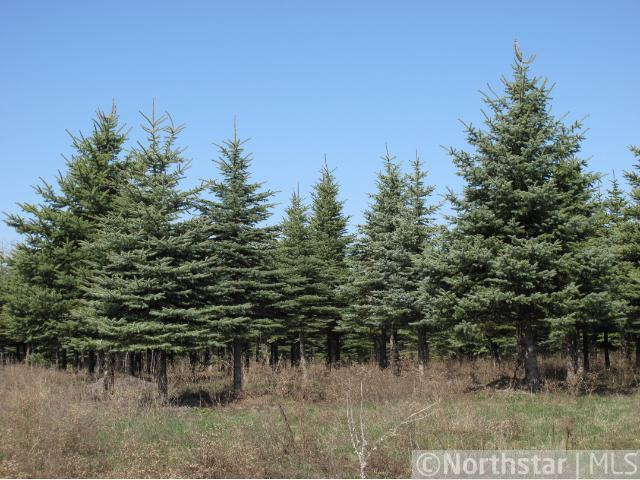 1634 Majestic Pines Trail, Afton, MN 55001