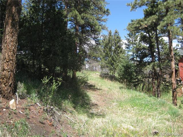 Adahi Road, Indian Hills, CO 80454