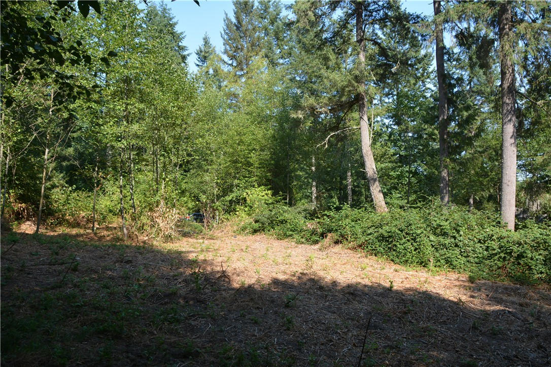 2318 155th St NW, Gig Harbor, WA 98332
