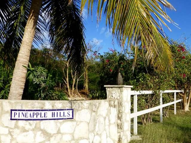 PINEAPPLE HILLS, Eleuthera,  00008