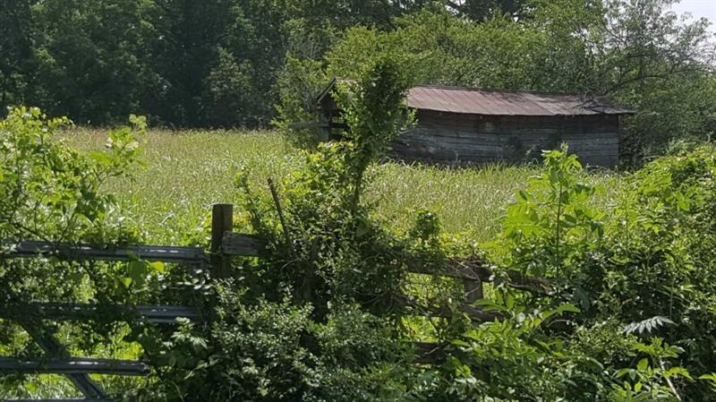 Sweetwater Juno Road, Dawsonville, GA 30534